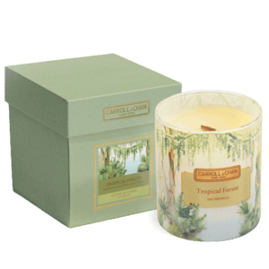 Tropical Forest Beeswax Candle