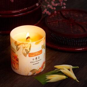 White Michelia Candle