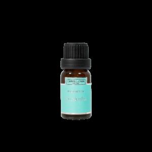Eucalyptus Fragrance Oil 10ml