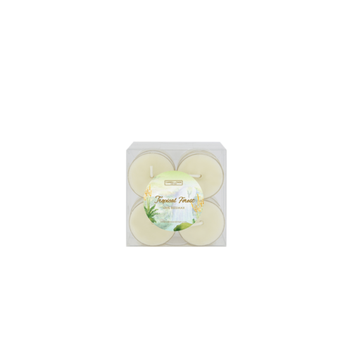 Tropical Forest Tea Light Candles