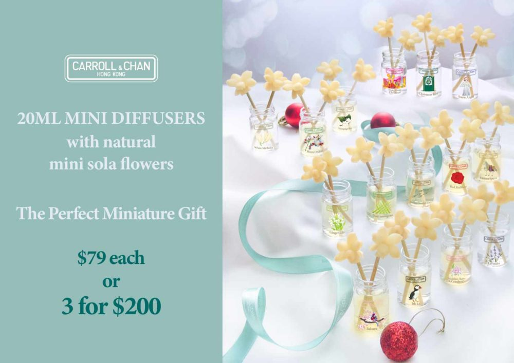 Special offer on Mini Diffusers, the perfect gift!