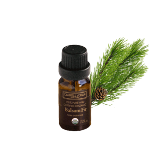 Organic Essential Oil, Balsam Fir