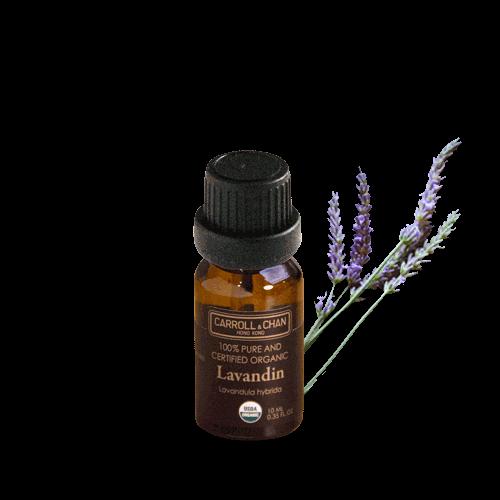 Lavendin Organic Essential Oil