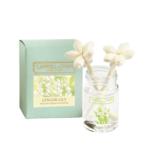 20ml Ginger Lily Mini Reed Diffuser