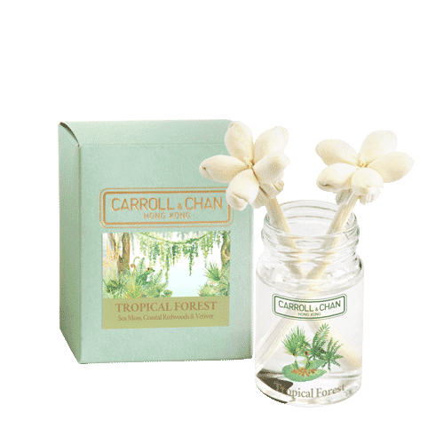 Tropical Forest 20ml Mini reed Diffuser